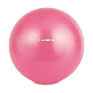 TOORX gym ball diam. 55