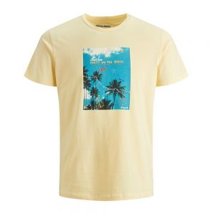 JACK JONES t-shirt luciano