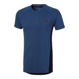PUMA t-shirt evostripe