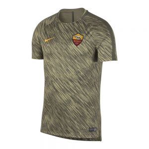NIKE t-shirt dry roma